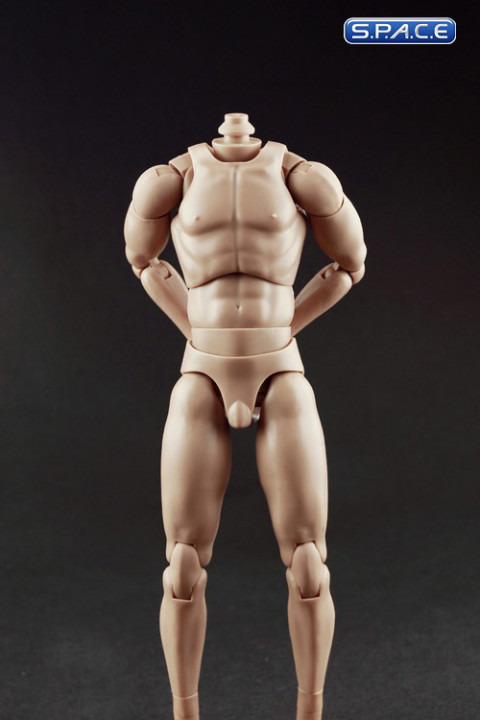 1/6 Scale Standard male high Body - narrow shoulders