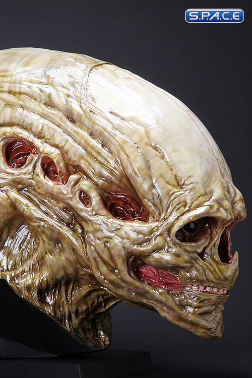1:1 Newborn Alien Life-Size Head (Alien Resurrection) - S P A C E