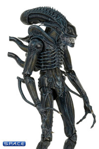 1/4 Scale Alien Warrior 1986 Version (Aliens)