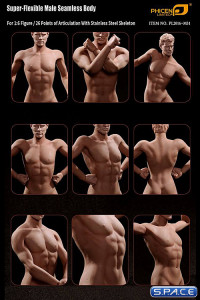 1/6 Scale Seamless Male Body M31 (Super-Flexible)