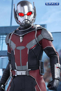 1/6 Scale Ant-Man Movie Masterpiece MMS362 (Captain America: Civil War)