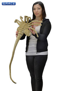 1:1 Facehugger Life-Size Prop Replica (Aliens)