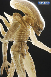 1/4 Scale 1979 Alien Big Chap Transculent Prototype Suit (Alien)