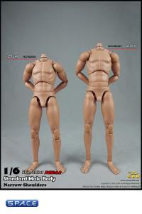1/6 Scale Standard Male high Body 2.0 - narrow Shoulders