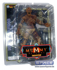 Imhotep from The Mummy Returns (Now Playing 2)
