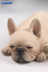 1/6 Scale beige French Baby Bulldogs