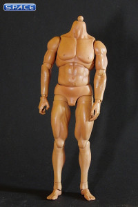 1/6 Scale Heroik Muscle Body - Limited Edition (tanned color)