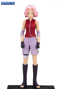Sakura from Naruto Shippuden (Color Tops)