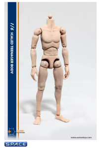1/6 Scale Teenager Body