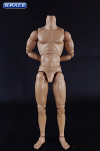 1/6 Scale Muscle male high Body