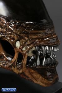 1:1 New Alien Warrior Life-Size Head (Alien Resurrection)