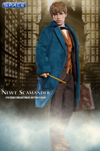 1/6 Scale Newt Scamander (Fantastic Beasts and Where to Find Them)