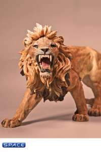 1/6 Scale African Lion deep color