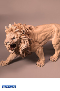 1/6 Scale African Lion light color