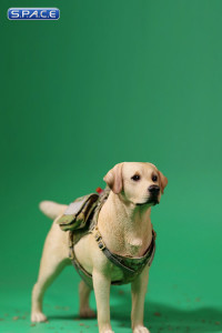 1/6 Scale Tactical Canine Vest