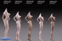 1/6 Scale Asian Girl type Seamless suntan Body / medium breast / headless