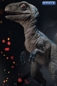 1/1 Scale Baby Blue Legacy Museum Collection Statue (Jurassic World: Fallen Kingdom)