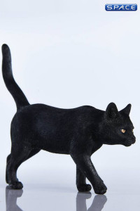 1/6 Scale black Cat