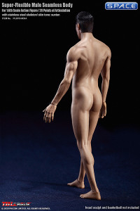 1/6 Scale Seamless Male Body M36A (Super-Flexible)