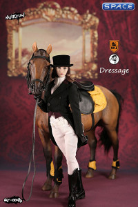 1/6 Scale brown Horse and Dressage Outfit Set