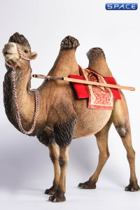 1/6 Scale brown Camel