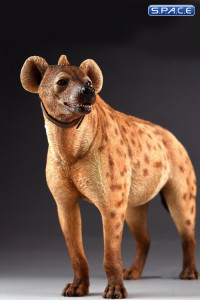 1/6 Scale light spotted Hyena