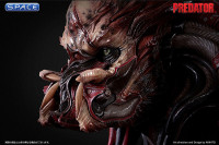 1:1 Kagero Predator Life-Size Bust (Predator)
