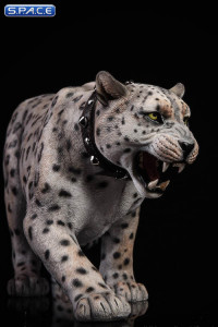 1/6 Scale bright pattern Leopard