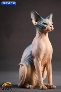 1/6 Scale pale & blue Canadian Hairless Cat