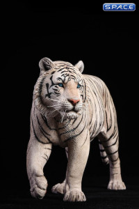 1/6 Scale white Bengal Tiger