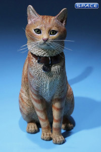 1/6 Scale orange tabby Cat