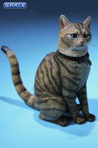 1/6 Scale mackerel tabby Cat