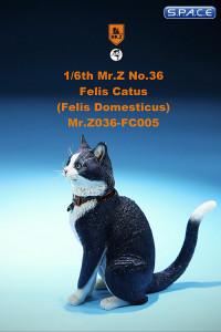 1/6 Scale black & white Cat