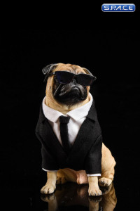 1/6 Scale Frank the Pug in Suit