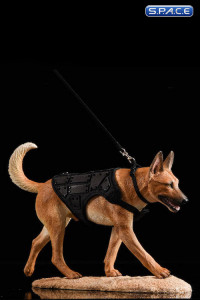 1/6 Scale light brown Malinois with Tactical Outfit