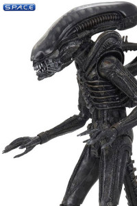 Ultimate Big Chap Alien 40th Anniversary (Alien)