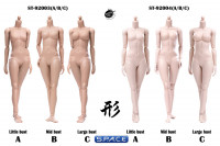 1/6 Scale female suntan Body (2019 Version / medium Breast / with joints)
