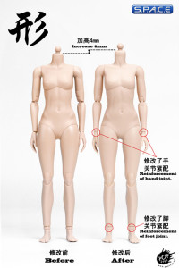 1/6 Scale female suntan Body (2019 Version / medium Breast / semi-seamless)