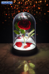 Enchanted Rose Light (Beauty and the Beast)