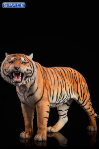 1/6 Scale yellow Bengal Tiger - Version 2