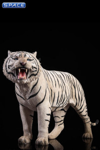 1/6 Scale white Bengal Tiger - Version 2
