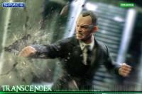 1/6 Scale Transcender