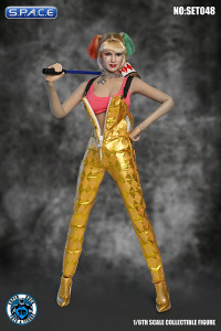 1/6 Scale Harley Character Set