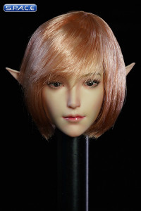 1/6 Scale Valaina Head Sculpt (short rose hair)