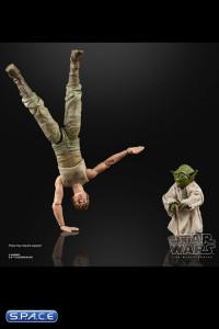 6 Luke Skywalker & Yoda Jedi Training 2-Pack (Star Wars - The Black Series)
