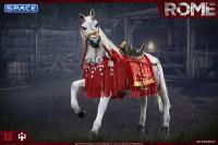 1/6 Scale War Horse of Julius Caesar