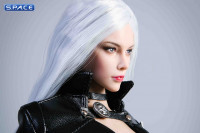 1/6 Scale silver-haired Killer Character Set