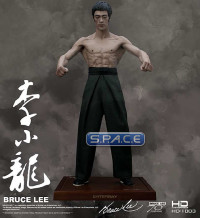Bruce Lee 70th Anniversary HD Masterpiece Statue (Bruce Lee)