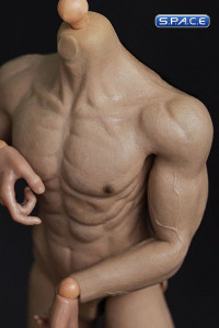 1/6 Scale Muscular Body - HJ002 (White)