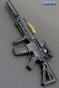 1/6 Scale Assault Rifle 416 Special Force Set A (Dam Neck)